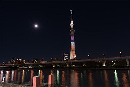 隅田公園の夜景