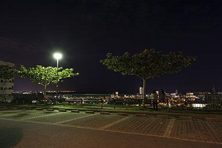 謝苅公園の夜景