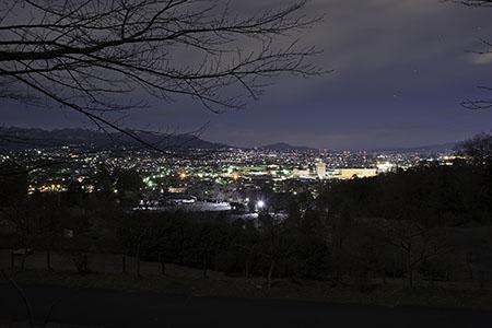 少林山 展望デッキの夜景