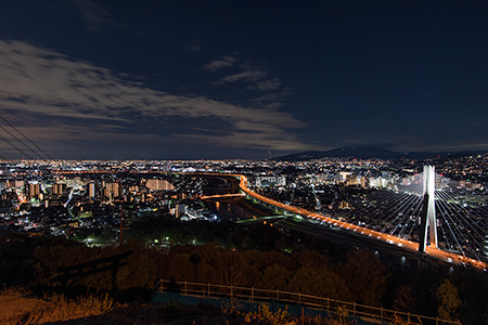 秀望台 五月山ドライブウェイの夜景