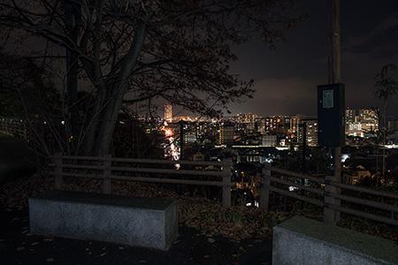 高観音近松寺の夜景