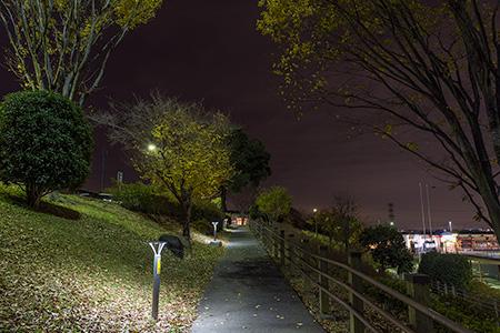 高坂SAの夜景
