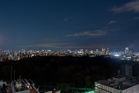 新宿高島屋タイムズスクエア ホワイトガーデンの夜景