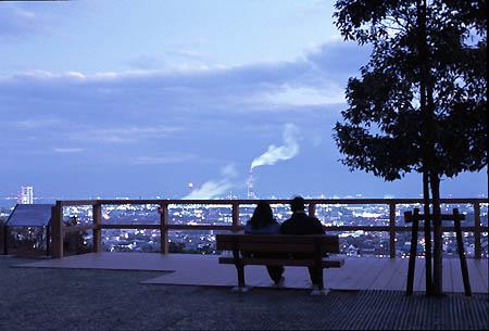 垂坂公園・羽津山緑地の夜景