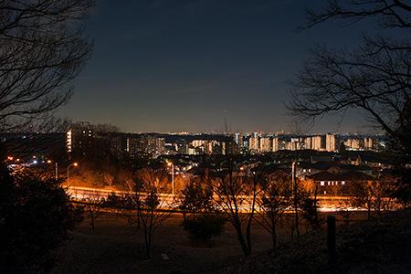 天王森公園の夜景
