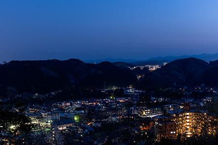 天覧山の夜景