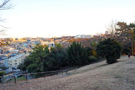 西寺尾の丘公園の夜景