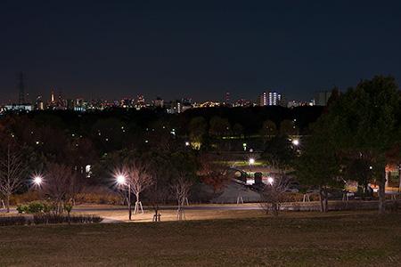 舎人公園 朝日の広場の夜景