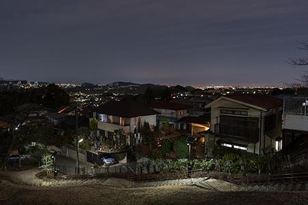 とりで公園の夜景