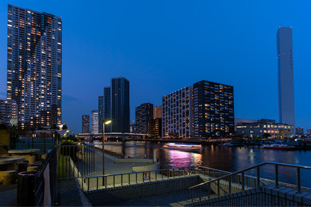豊海運動公園の夜景