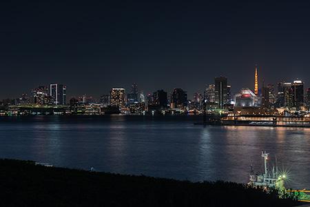 豊洲市場 屋上緑化広場の夜景