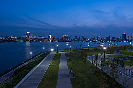 豊洲ぐるり公園の夜景