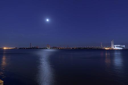 海芝公園の夜景
