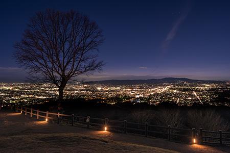 新日本三大夜景「若草山」