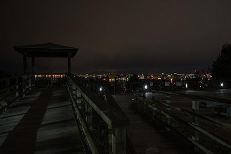 西公園・中央展望広場の夜景