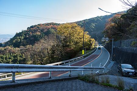 八木山展望公園の夜景