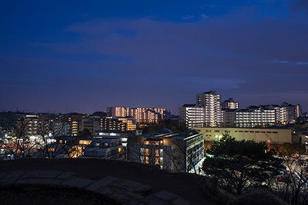 山田富士公園の夜景