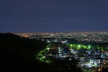 山手台北公園の夜景
