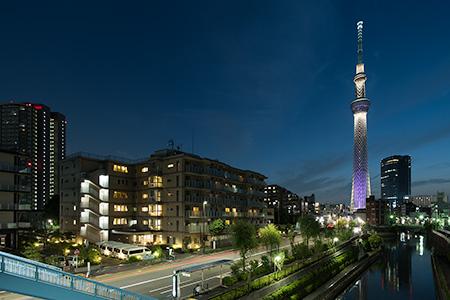 柳島歩道橋の夜景