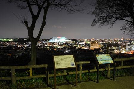 夢見ヶ崎動物公園の夜景